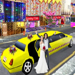 Luxury Wedding Limousin Car Game 3D