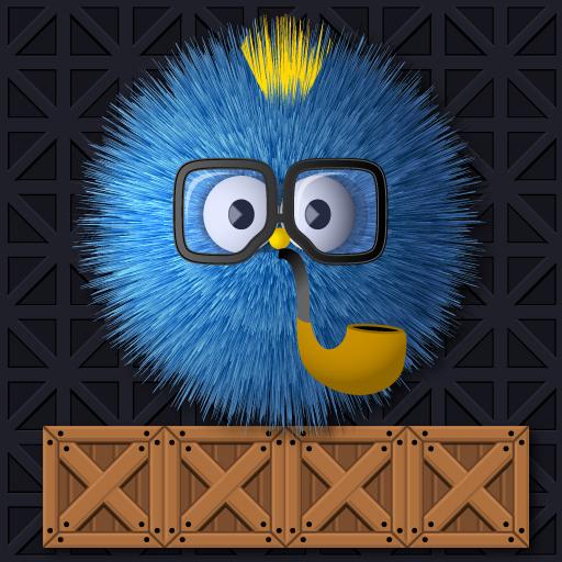 Where Is My Ruffed Bird